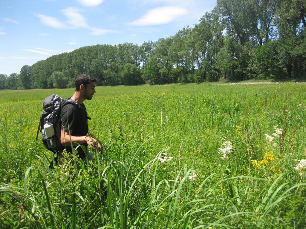 Découverte guidée du delta de la Sauer, dans le Nord de l'Alsace, avec les Amis de la Nature