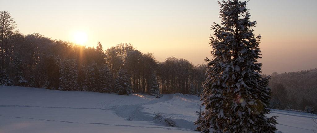 Lever de soleil d'hiver à la Chaume des Veaux, près du Champ du Feu, en Alsace