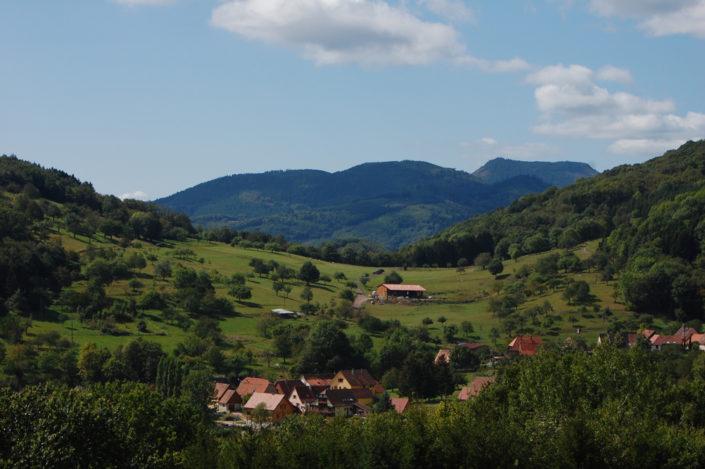 paysage de fond de vallée dans les Vosges moyennes