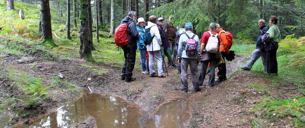 stage ARP niveau 2 - formation de 13 stagiaires AN dans les Vosges du Nord